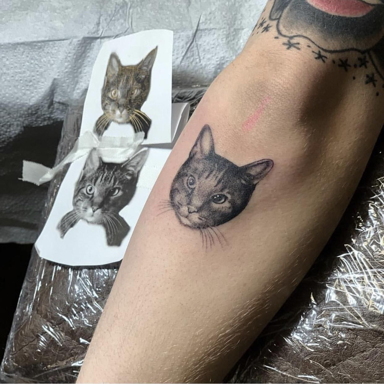 Pin By Sevienglacelle On Pets Cat Portrait Tattoos Cat Tattoo