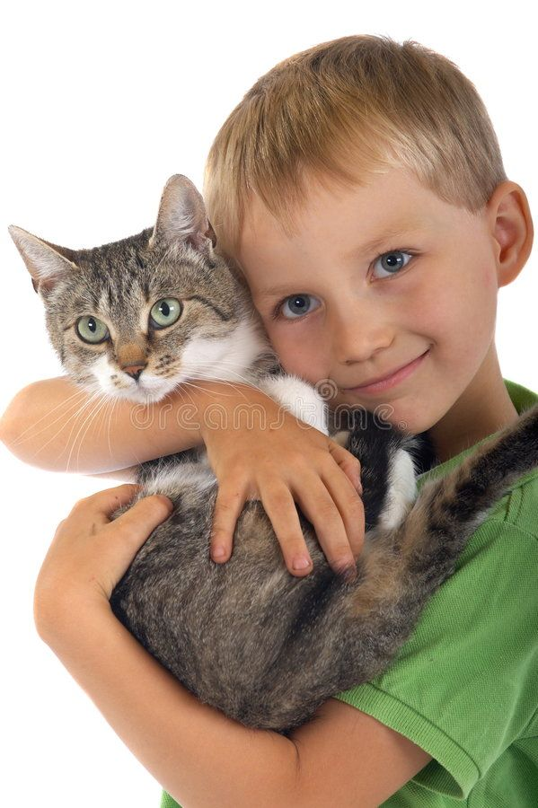 Young boy with cat. On white background , SPONSORED, boy