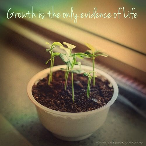 """""""Growth is the only evidence of life"""". http://siddharthmalkania.com/"""