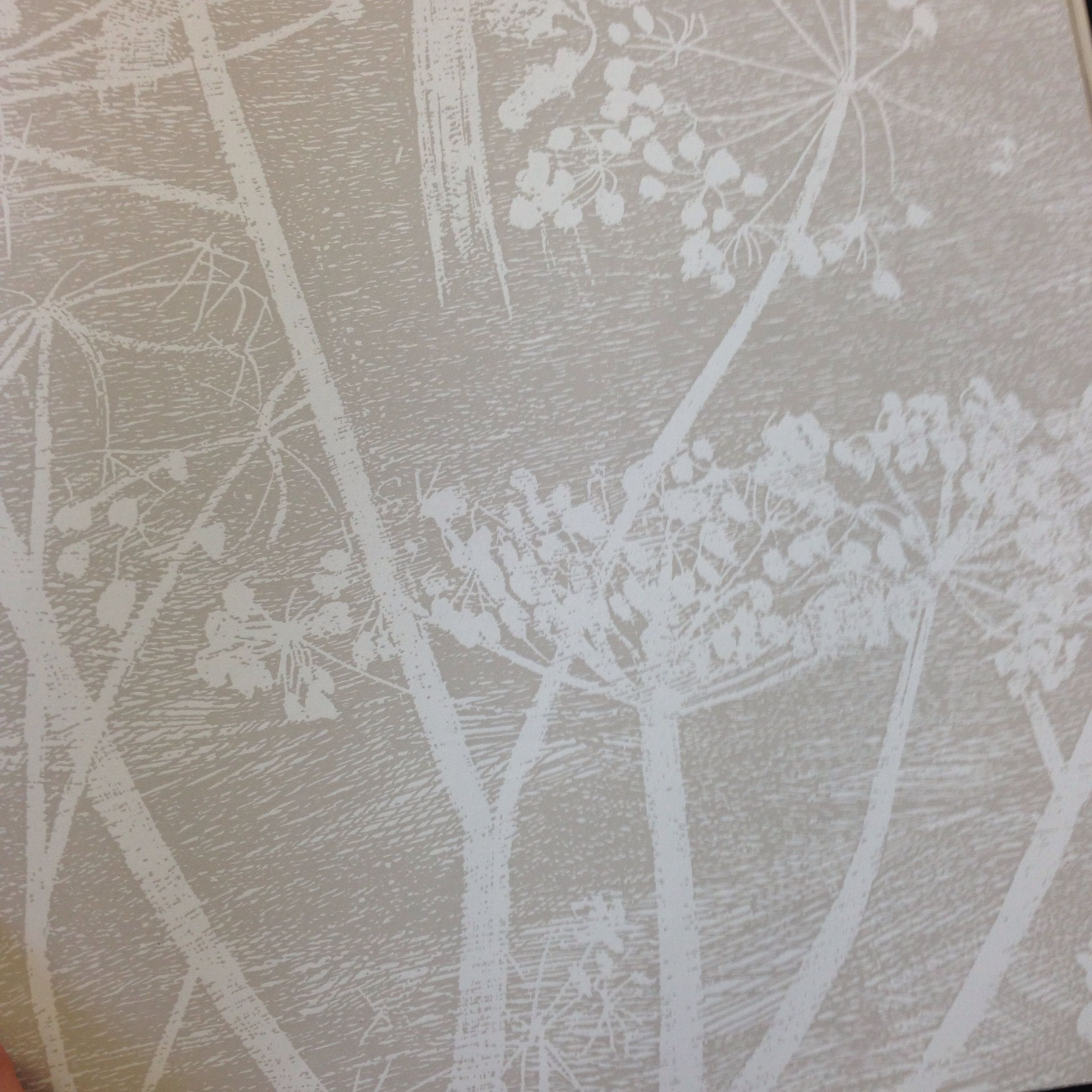 LOVE the wallpaper Cow Parsley by Cole & Son in Yellow