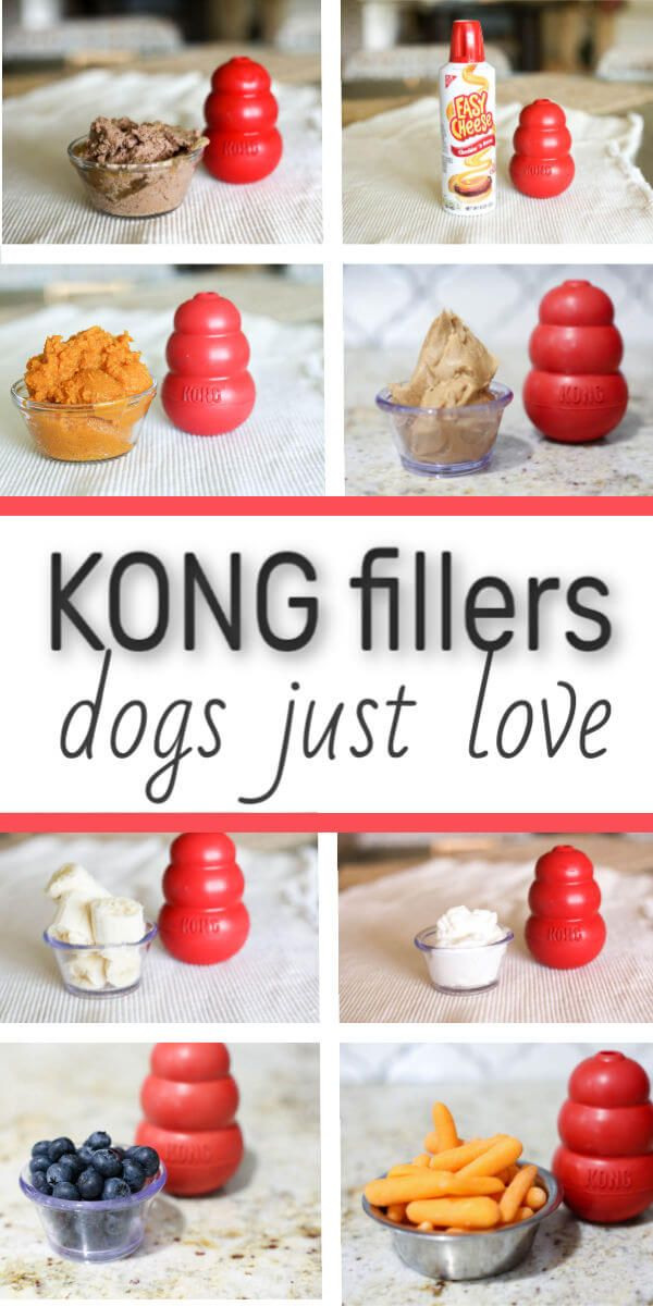 15 KONG Fillers Your Best Friend (Dog) Will Love