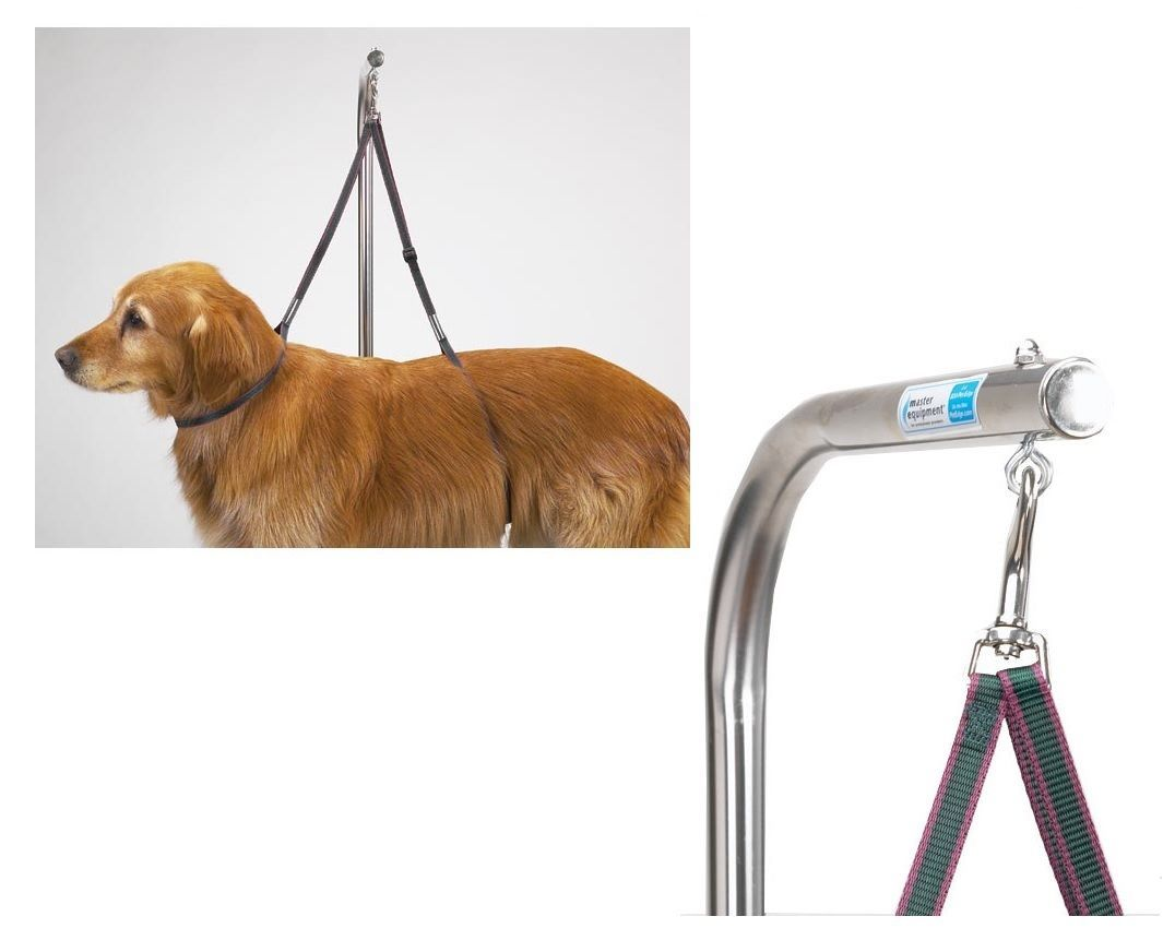 Top Performance Pet Grooming Tables Pet Supplies Dog Training