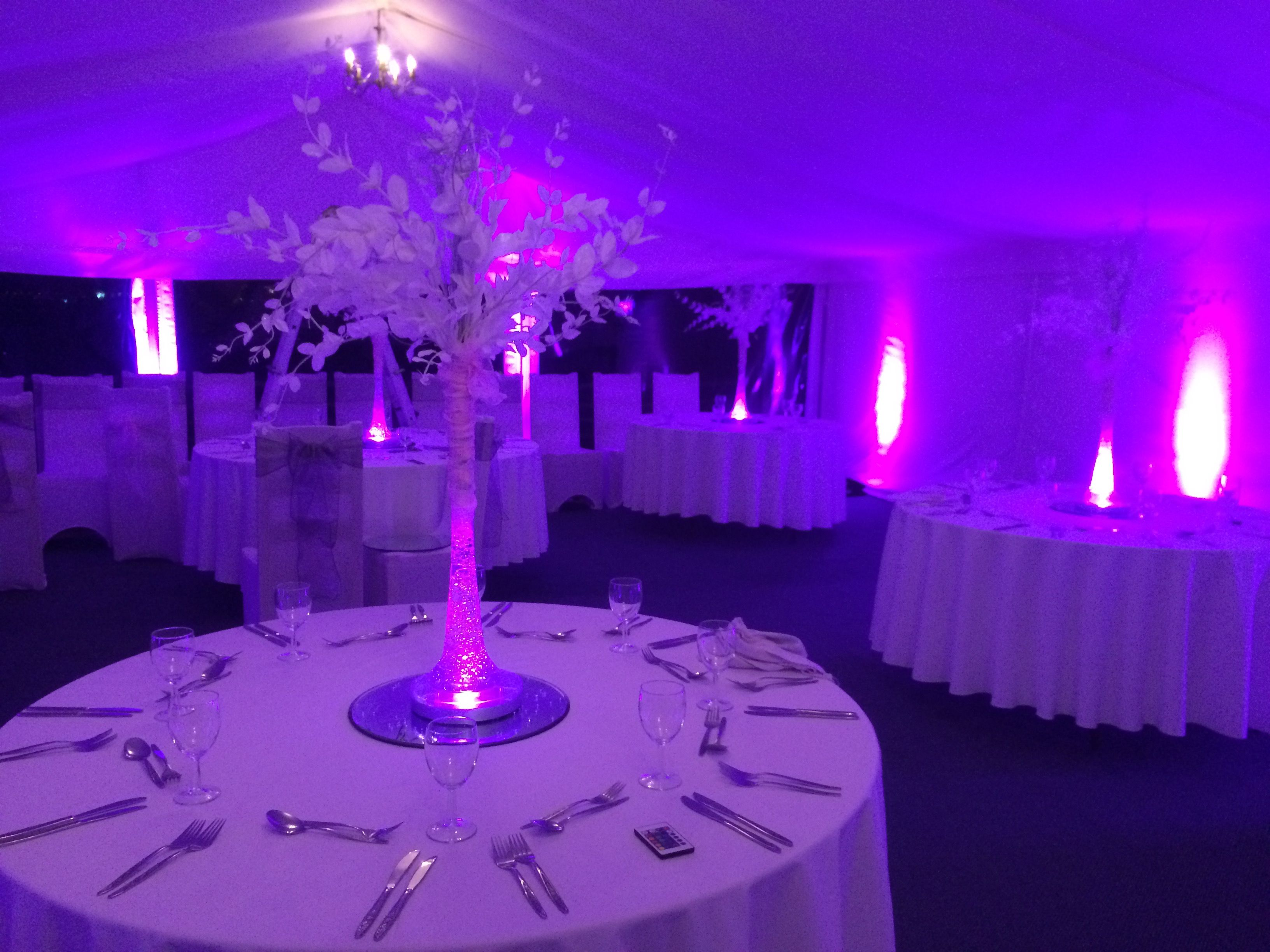Evening Marquee With Uplighters Lovely Purple Ambience For A Wedding Kent Venue