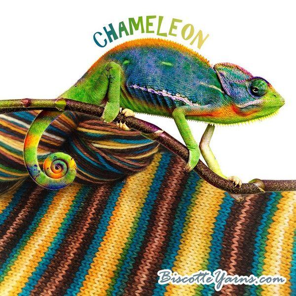 "Bis-sock yarn ""Chameleon"" self-striping hand-dyed yarn | Products ..."