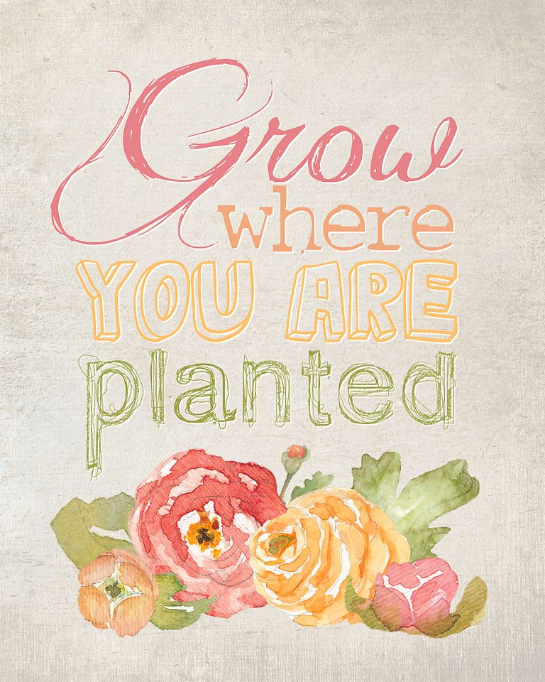 Grow Where You Are Planted Free Printable Inspirational Printables Free Inspirational Printables Free Printables