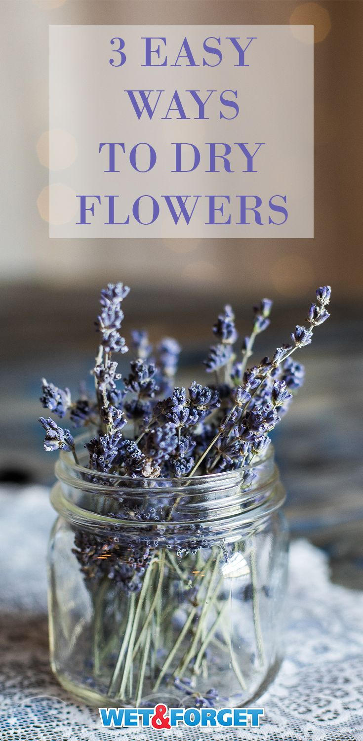 Before tossing out the fall flowers, learn how you can put them to use. Check out these 3 drying flower methods and how to decorate with them.