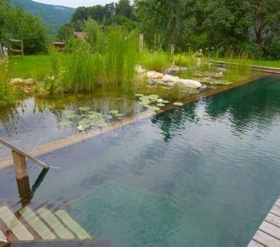 An alternative to chlorine pools the biotop natural pools use plants to keep water clean and for Alternative to chlorine in swimming pools