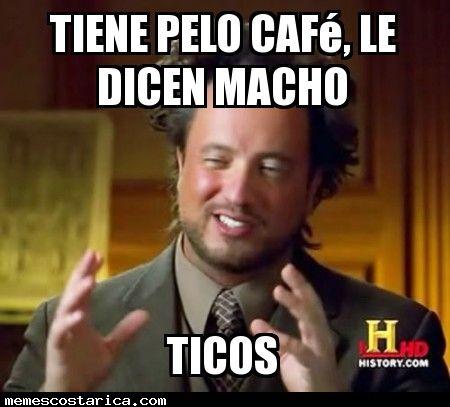 castaños http://memescostarica.com/castanos/