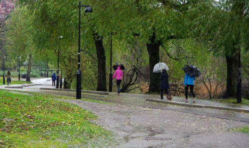 Sateesta huolimatta Töölönlahden kävelijöitä riittää