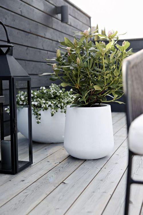 Plante Exterieure En Pot Terrasse Au Sol En Bois Decoration De