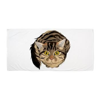 Maine Coon Cat Beach Towel from online store: AG Painted Brush T-Shirts. #cafepress #towel #beach