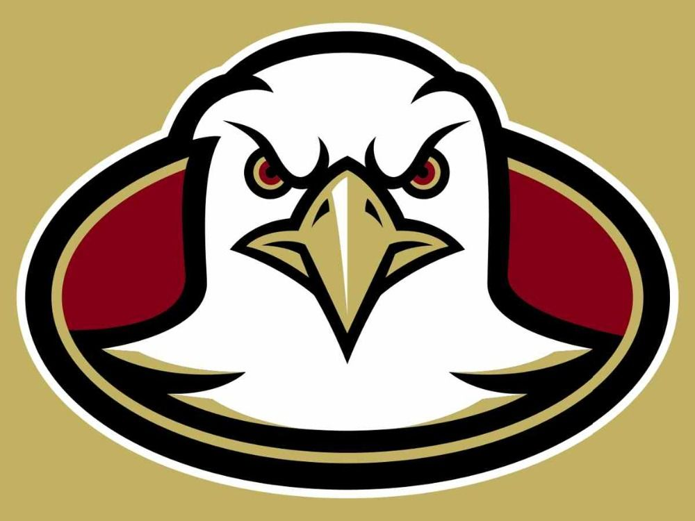 3x5ft Boston College Eagles flag competitions and ...