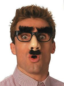 Mr Boss Disguise Funny Clown Comedy Groucho Glasses Parade Prop