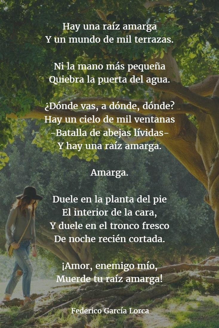 Poemas De Federico Garcia Lorca 3 Garcia Lorca Poemas Poemas Poemas De La Vida