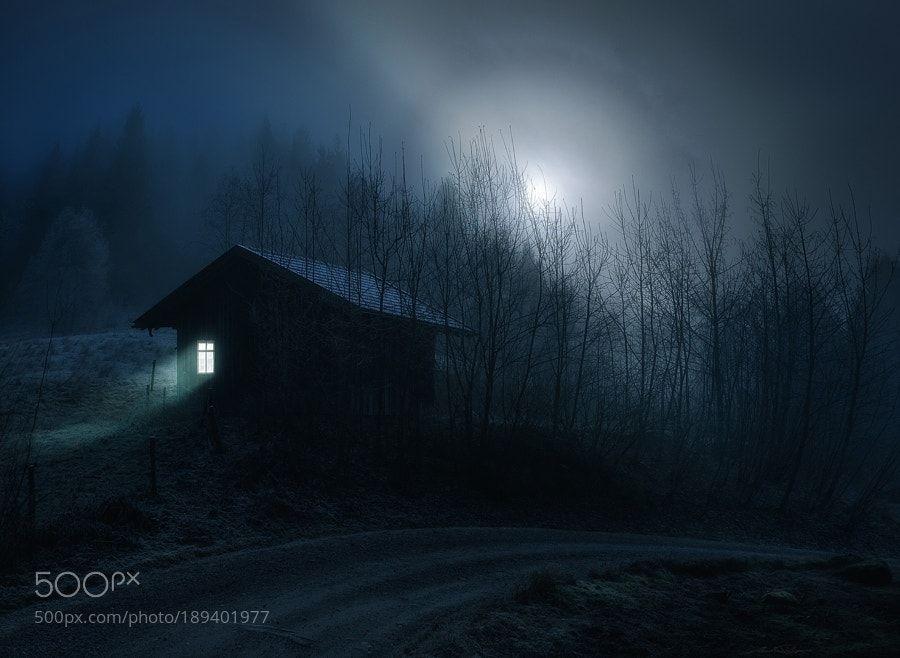 . : Stille Nacht : . by Martin-Pfister