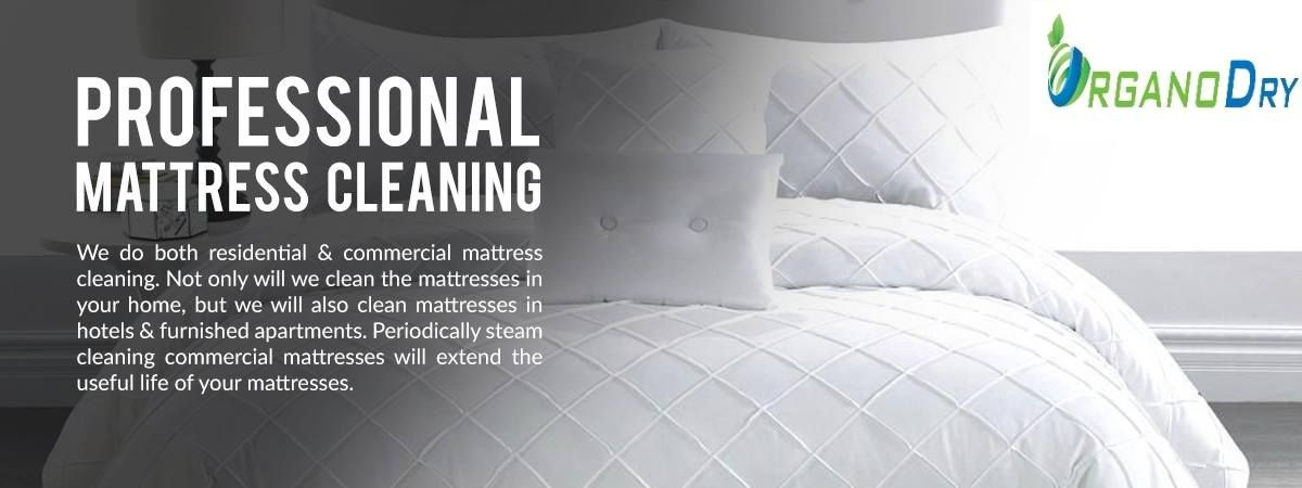 We Recommend Getting Your Mattress Professionally Cleaned Every Months To Keep Them Germ Free Contact Us Toda Mattress Cleaning Furnished Apartment Mattress
