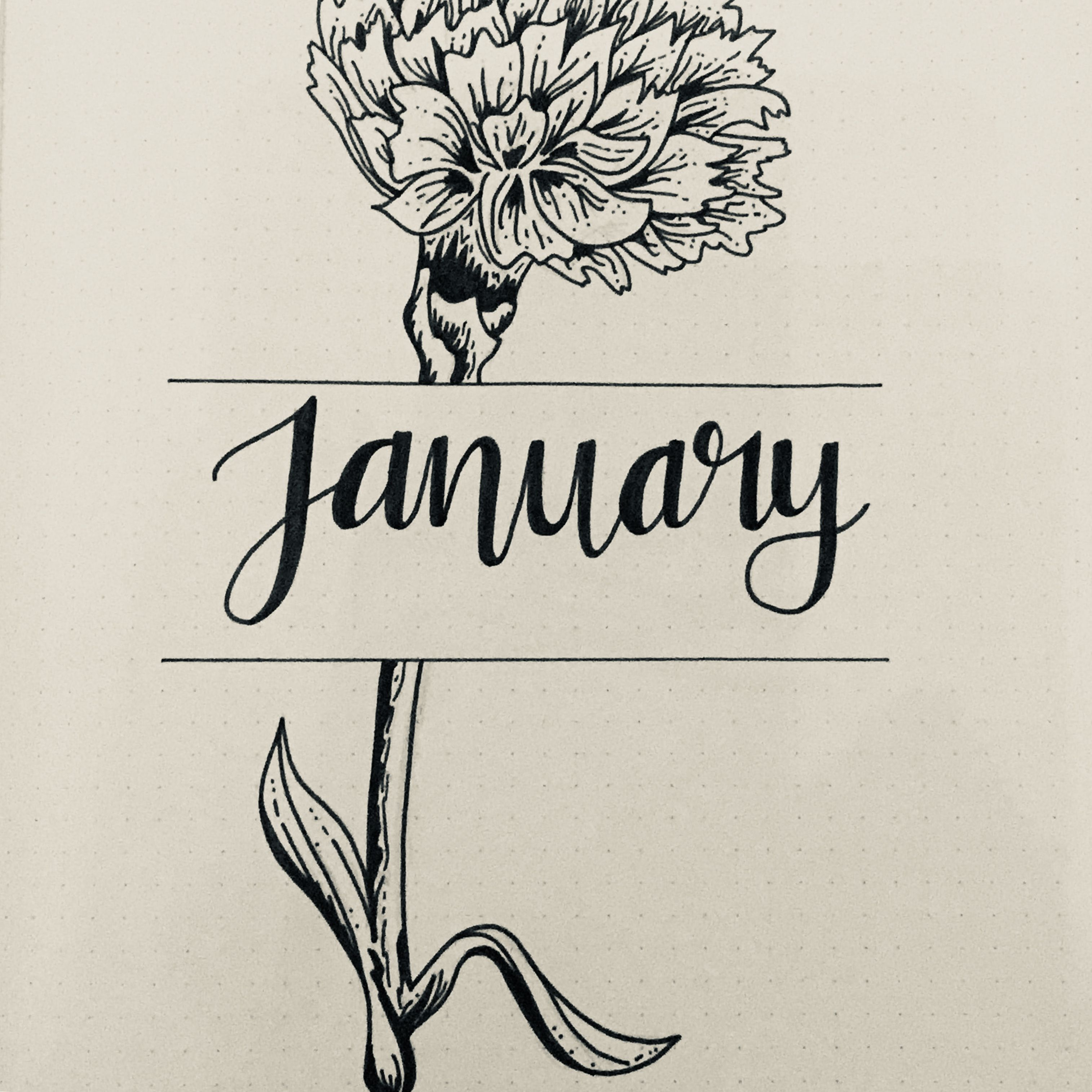 January Bullet Journal Cover Page Carnation Flower
