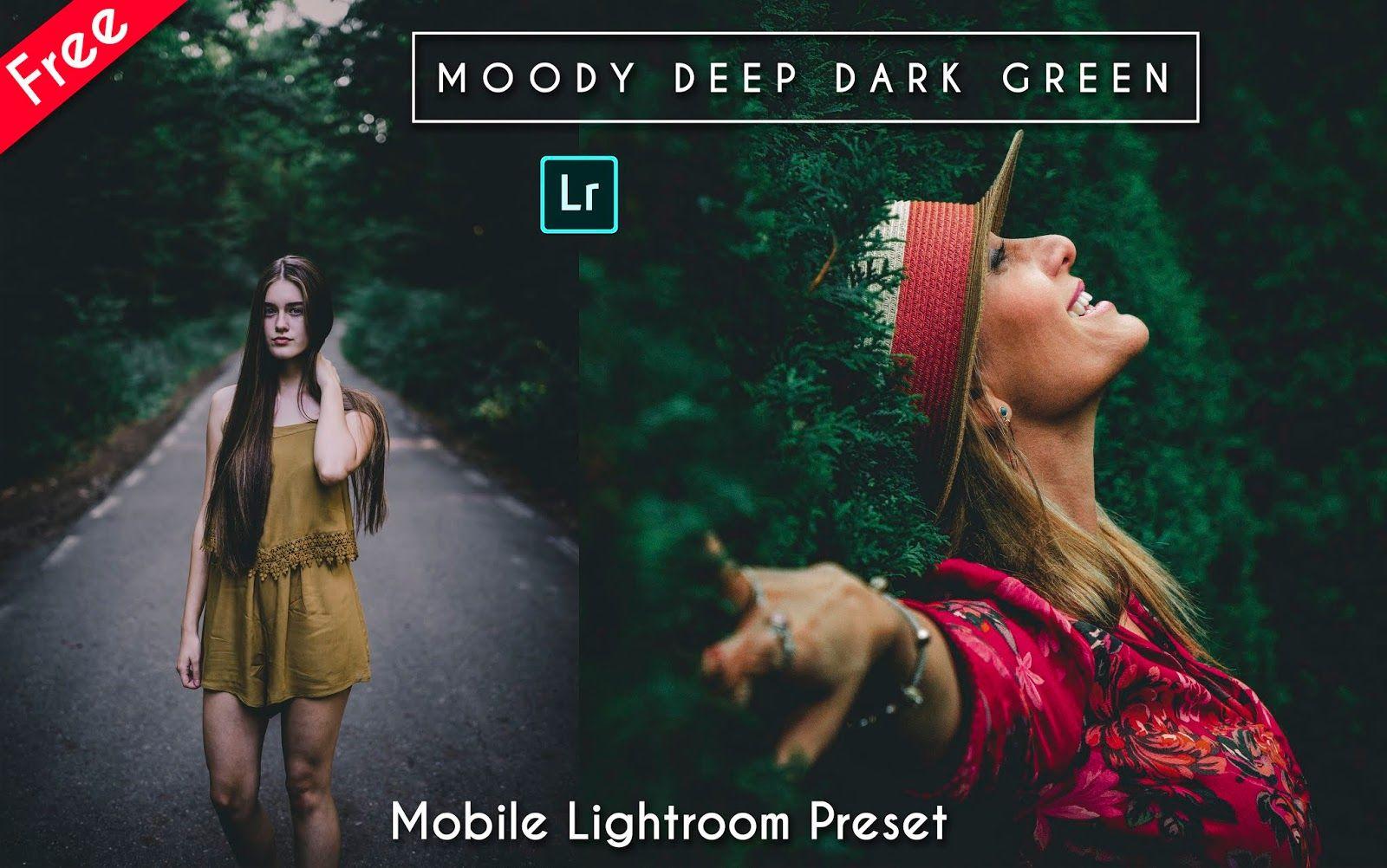 Dark and moody lightroom presets free