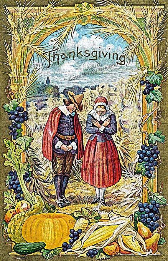 Vintage Thanksgiving Postcard With Pilgrim Couple Bunches Of Grapes Border