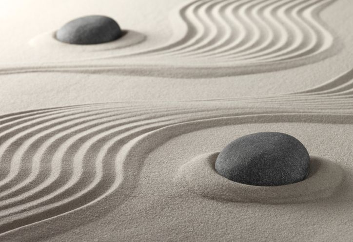 Birds Eye View Of Sand Zen Garden   Google Search