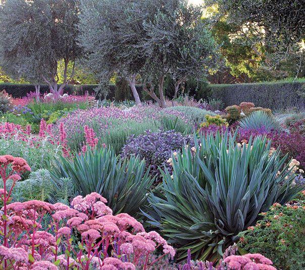 Visit Victoria S Iconic Lambley Nursery This Spring To Explore Australia S Leading Dry Climate Plant Nursery Drought Tolerant Garden Dry Garden Native Garden