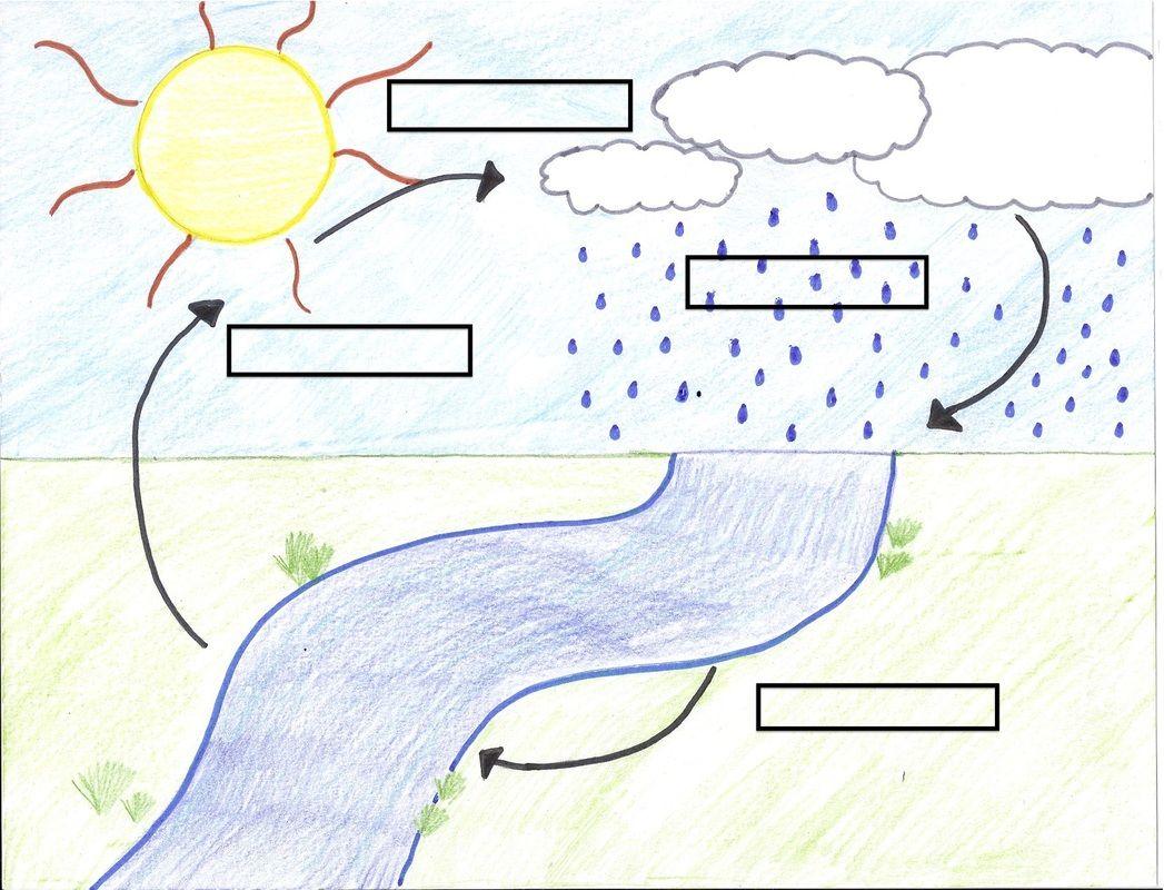 blank water cycle diagram worksheet [ 1047 x 800 Pixel ]