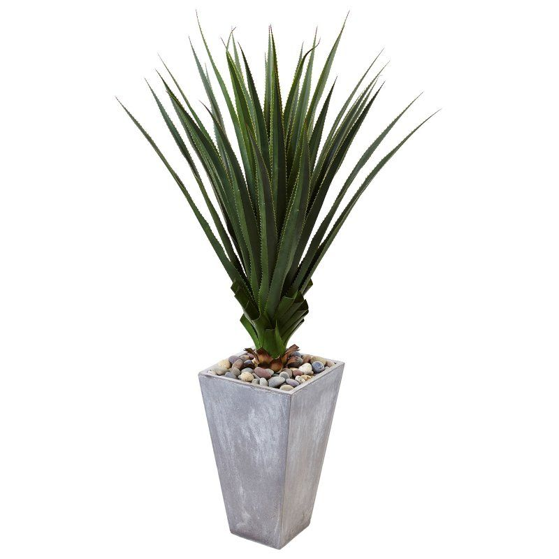 Nearly Natural 5 Ft Spiked Agave Silk Plant With Cement Planter Cement Planters Agave Plant Planters