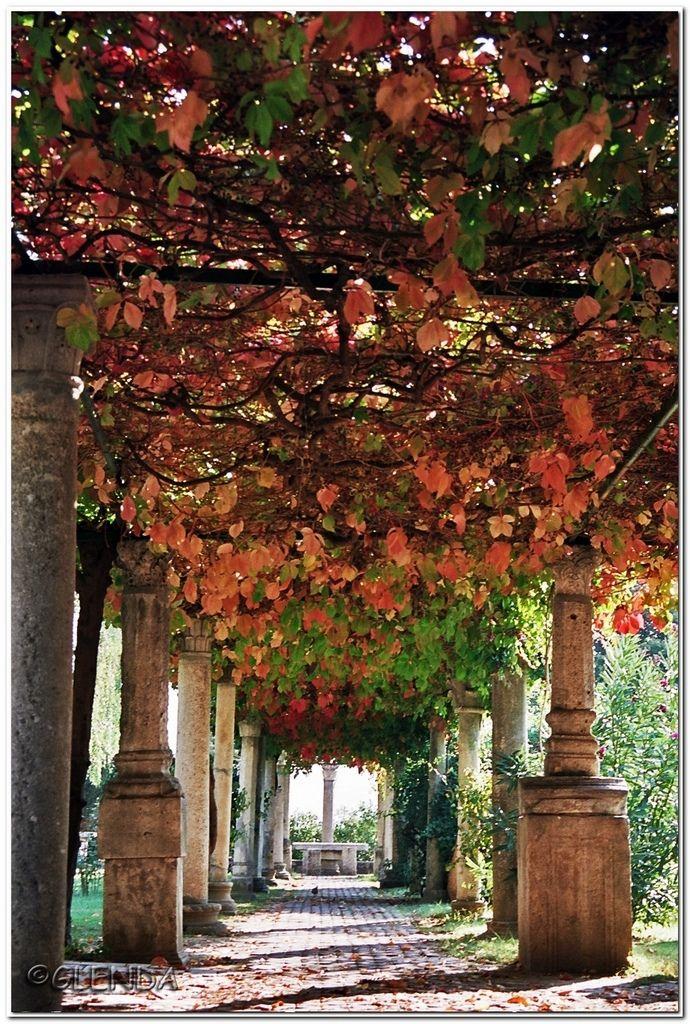 Insanely gorgeous!  // Great Gardens & Ideas //
