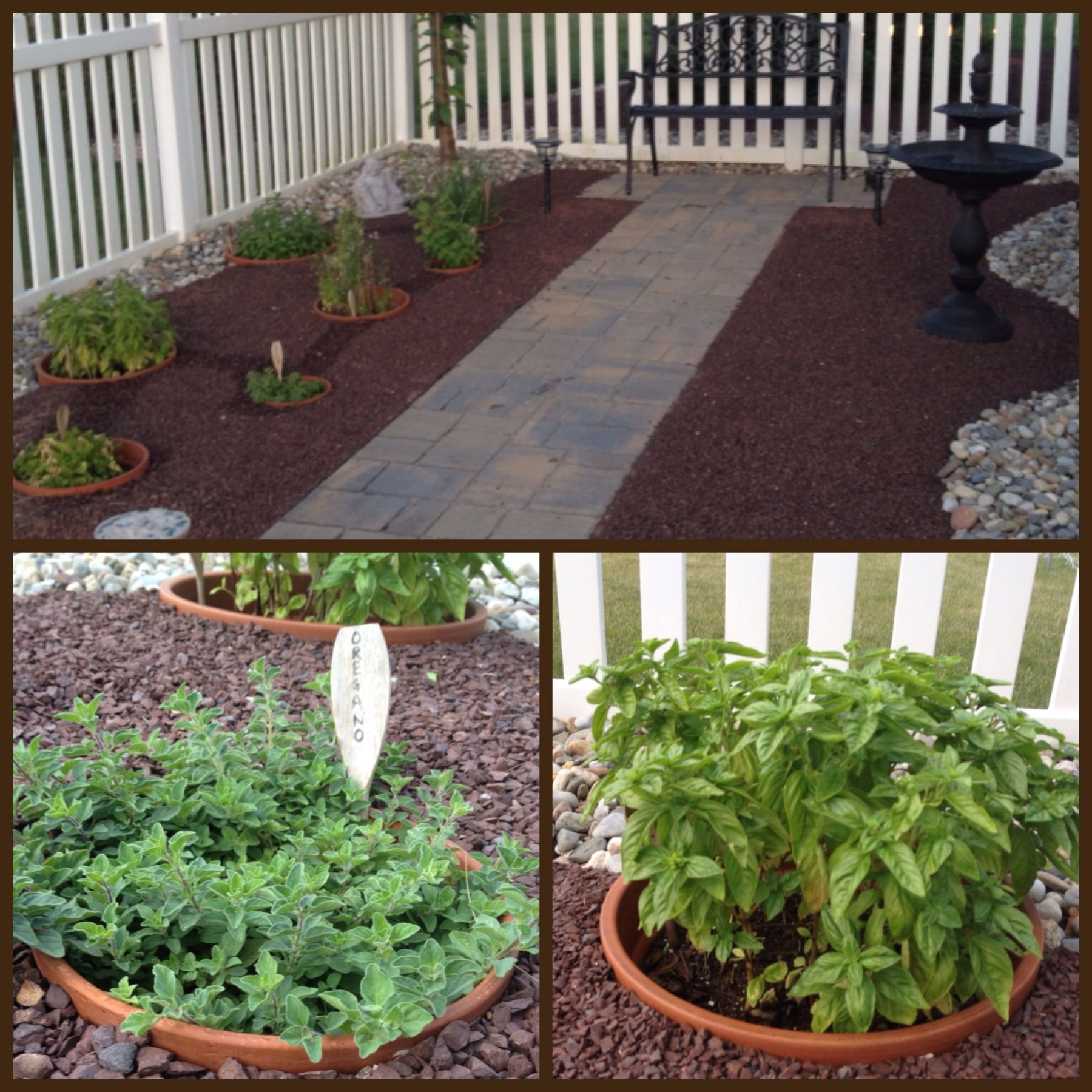 Sunken pot herb garden