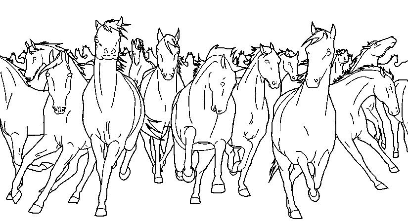 Wild Horses Horse Coloring Pages Horse Coloring Coloring Pages