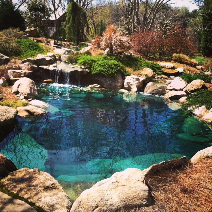 Backyard Ponds Builders In Kochi: Pin By Daniel Ethan Troup On Home Pools, Ponds, Recreation