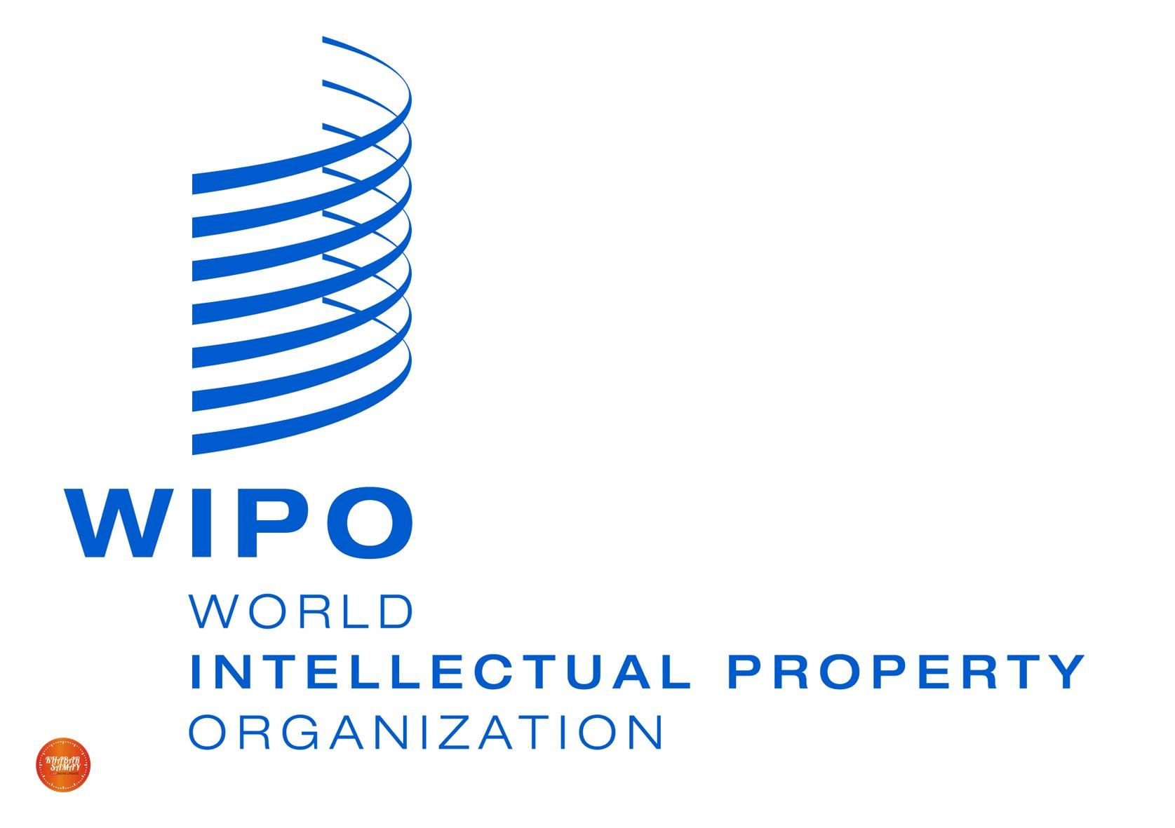 The Department Of Industrial Policy And Promotion Dipp And World