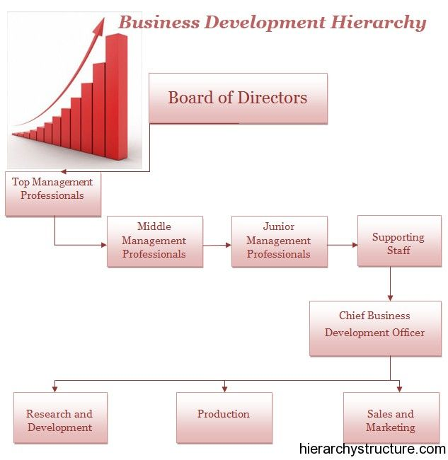 Business Development Hierarchy  Business Hierarchy