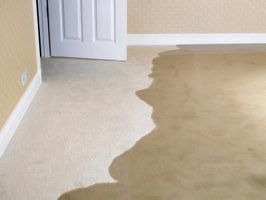 How to Get Odor Out of Wet Carpet | Wet basement, How to ...