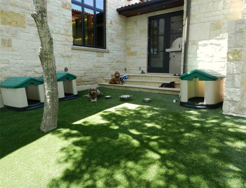 Artificial Grass And Lawn Turf Austin Tx Creative Turf