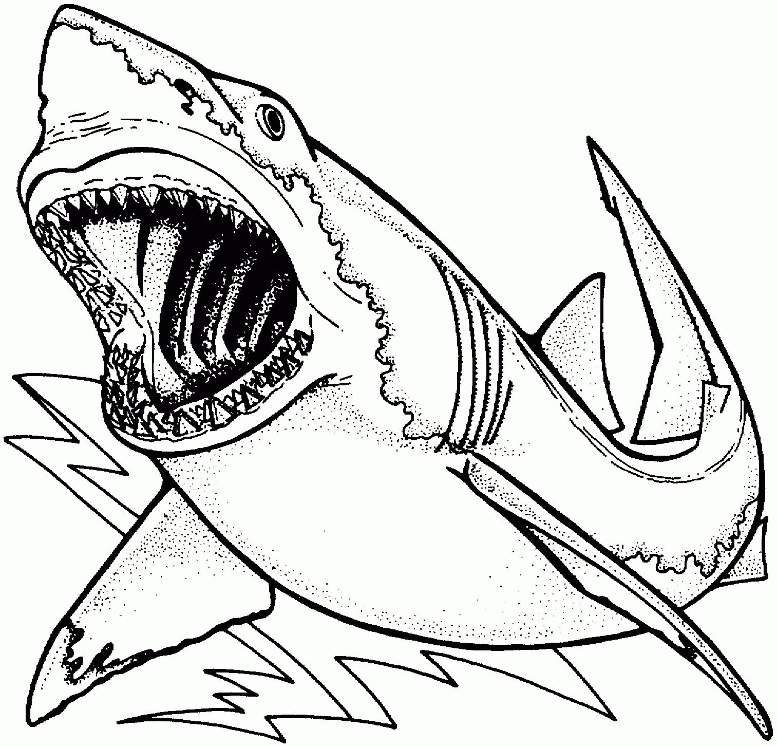 Scary Shark Coloring Pages Printable Designs Collections