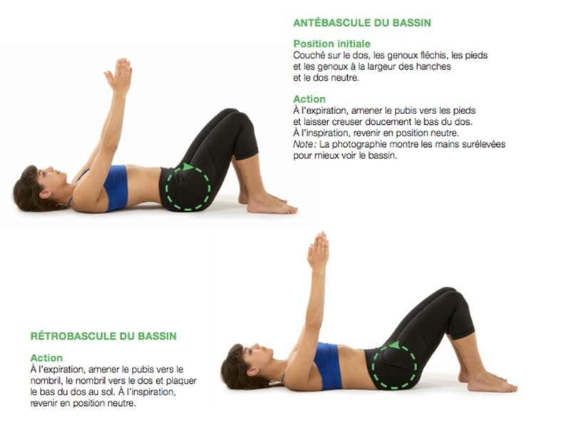 8 exercices pour lutter contre le mal de dos | Exercice ...