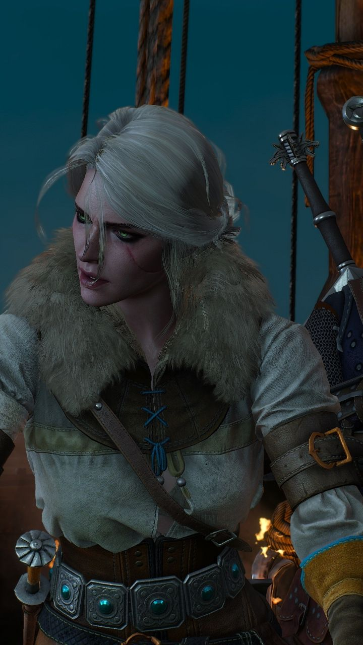 All warriors together, The Witcher 3: Wild Hunt, 720x1280 ...