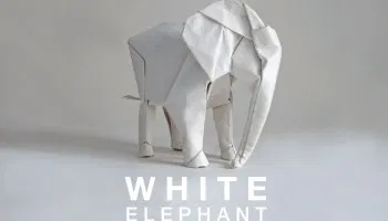 Photo of Artist Sipho Mabona Is Planning To Make a Lifesize Origami Elephant Out of a Giant Square of Paper