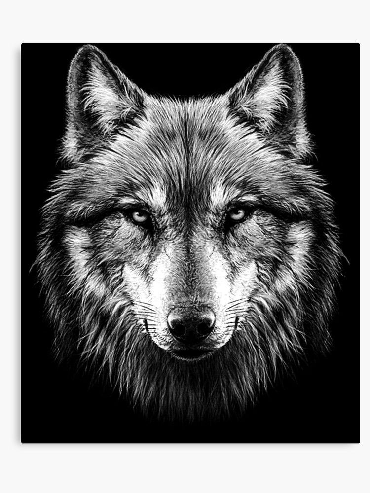 Wolf Face Canvas Print Wolf Face Wolf Face Tattoo Wolf Face Drawing