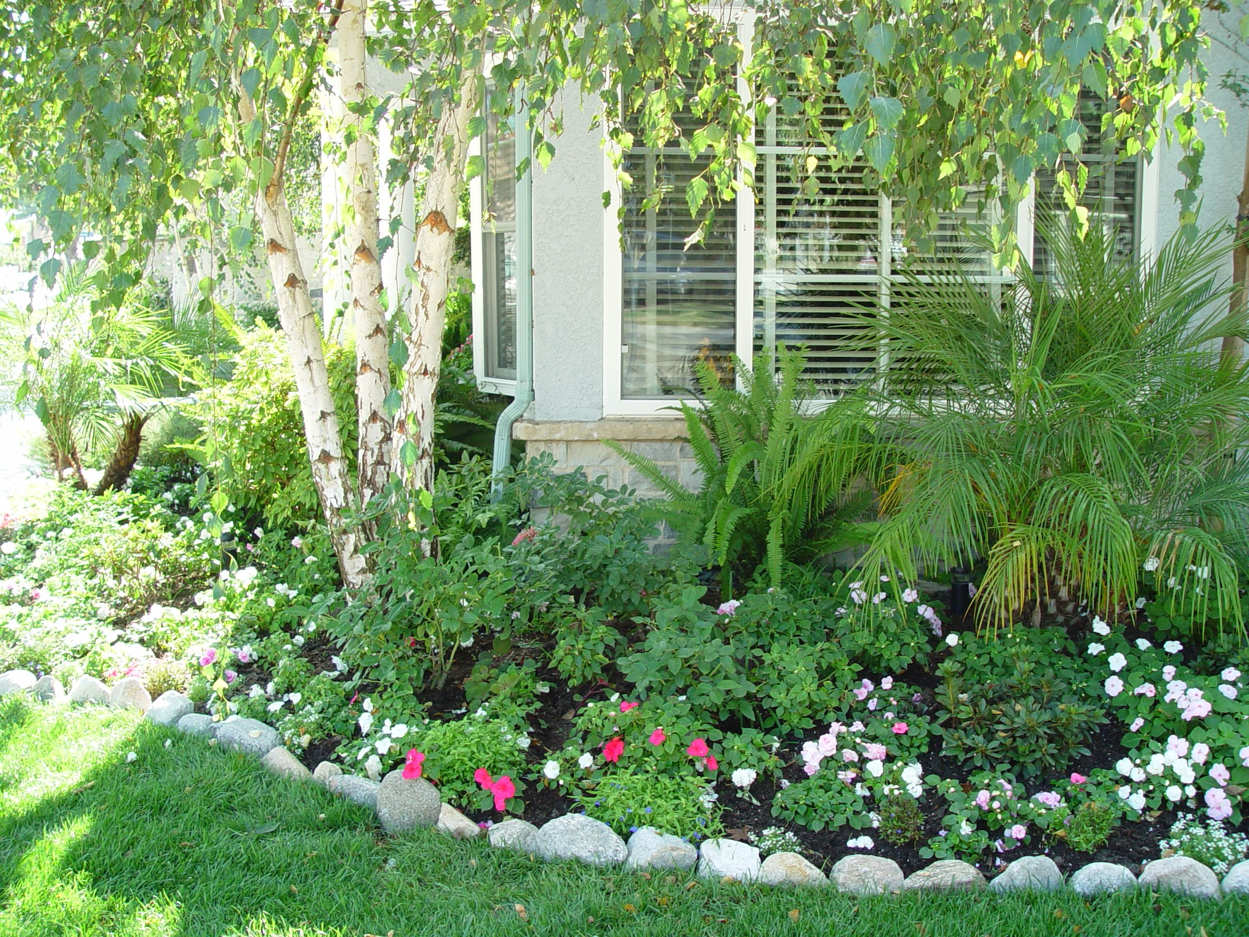gardening small spaces along with white iceberg roses complement