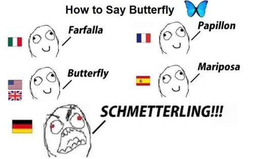 It S Just German German Language Funny Funny Texts Pinterest Humor