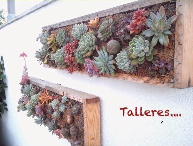 Taller cuadro de suculentas popurri palma decoraci n de - Cuadro jardin vertical ...