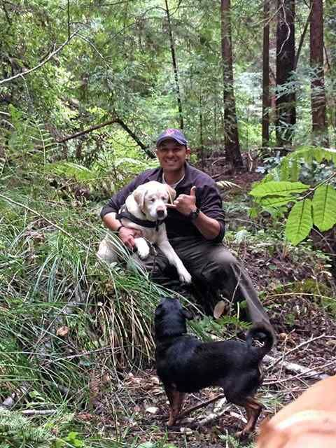 Mobile Web - Lifestyle - Rescue of old, blind dog cheers San Lorenzo Valley