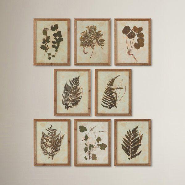 Botanical specimen 8 piece framed graphic art set reviews birch lane