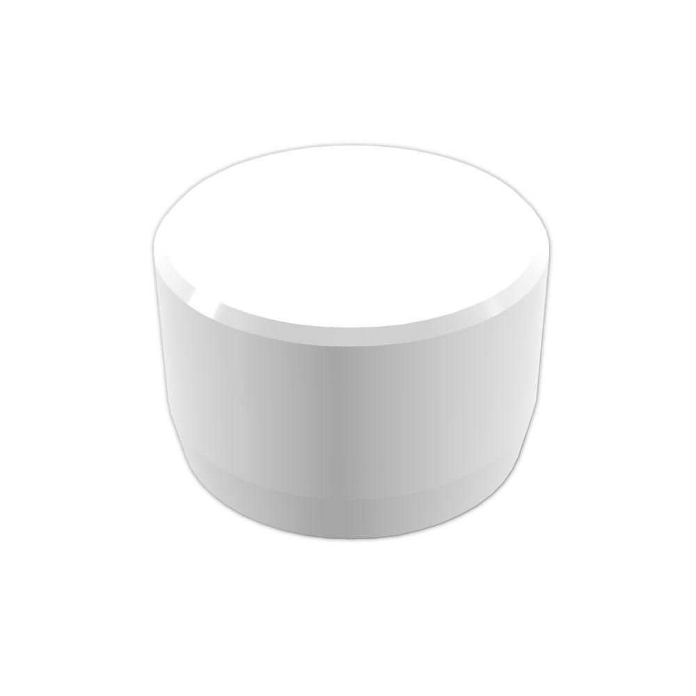 Formufit 1 In Furniture Grade Pvc External Flat End Cap In White 10 Pack F001eec Wh 10 The Home Depot Furniture Grade Pvc Pvc Fittings Pvc Pumpkin