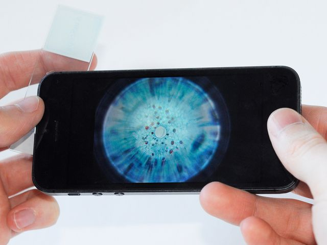 Micro Phone Lens 150x: Cell Phone Based Microscope by Thomas Larson