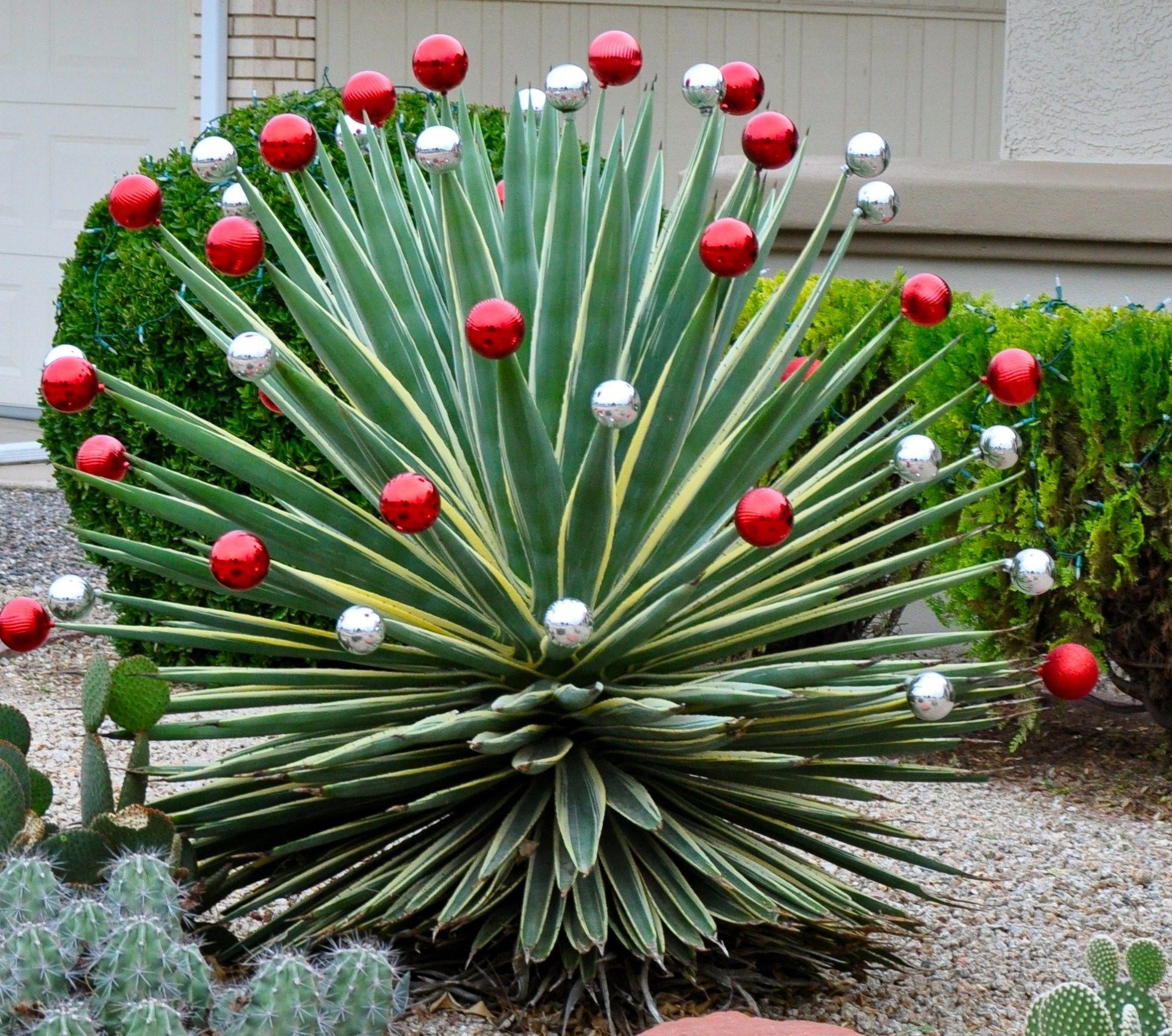 Diy outdoor christmas decorations   Cheap u Easy DIY Outdoor Christmas Decorations  Itus beginning