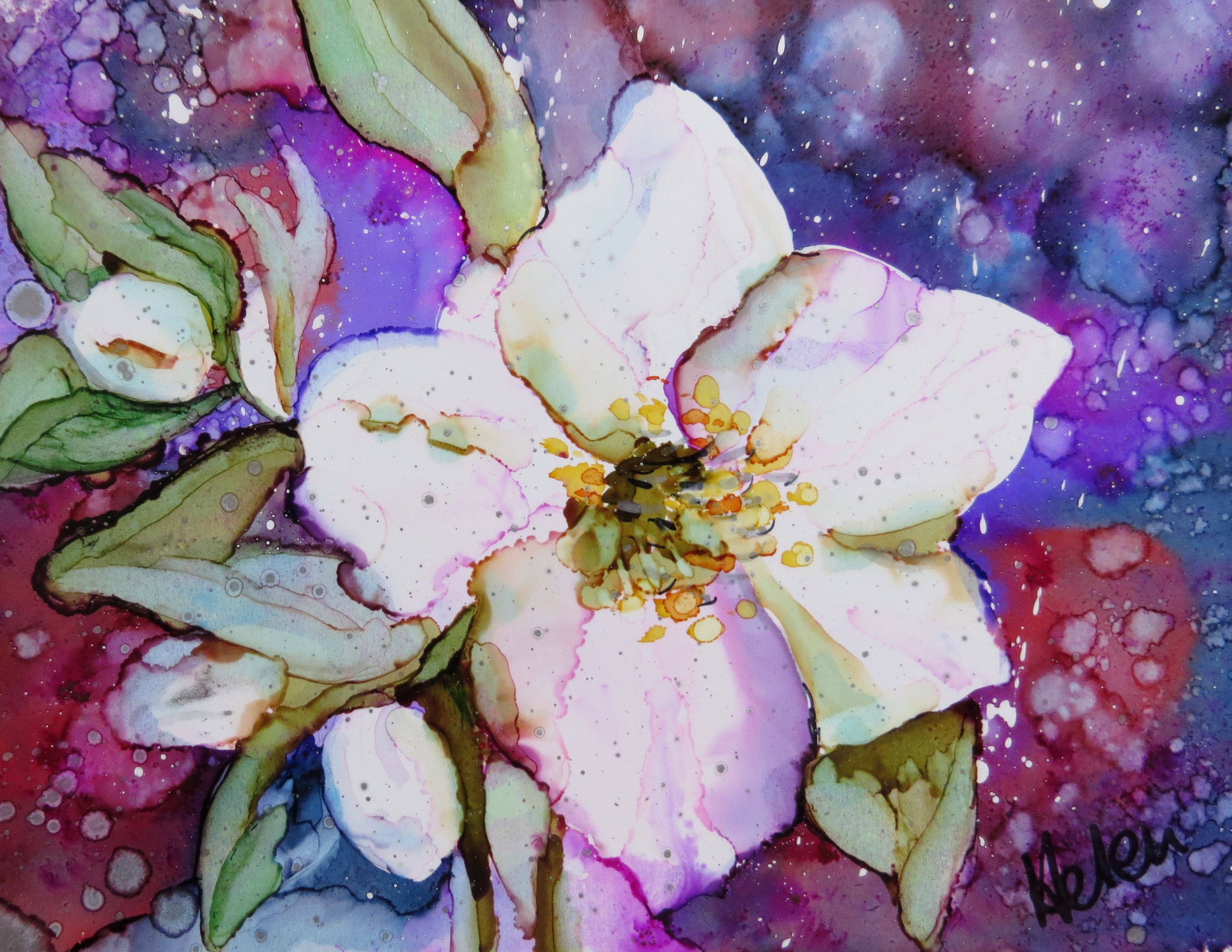 Christmas Rose. Alcohol Ink on Yupo - Helen Cook