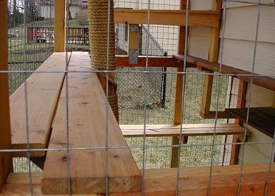 Ce New4 Jpg 25037 Bytes Outdoor Cat Enclosure Cat Enclosure Outdoor Pet Enclosure
